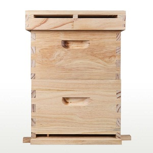 Beekeeping double layer pine wooden beehive for sale